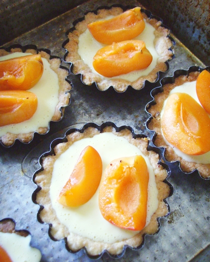 apricot tartlets - dishonored - tartaletki migdałowe z masą z mascarpone i morelami (11)
