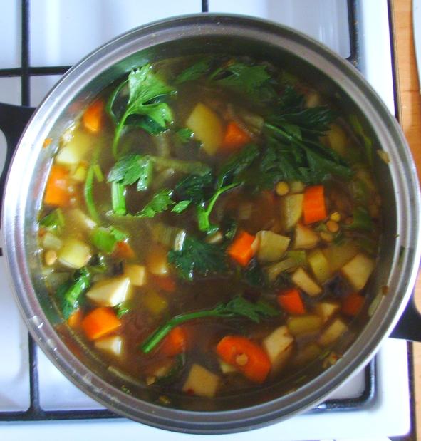 zupa korzenna - gothic - zupa z soczewicy i warzyw korzeniowych - 1
